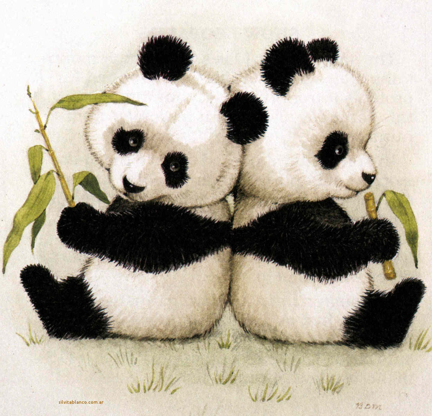 Super Oso panda especie en peligro de extinción QK02